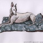 White Greyhound - RGT