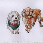 Hottie  & Septimus - Dandie Dismount & King Charles Spaniel